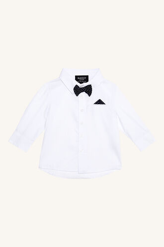 DAPPER SHIRT in colour SNOW WHITE