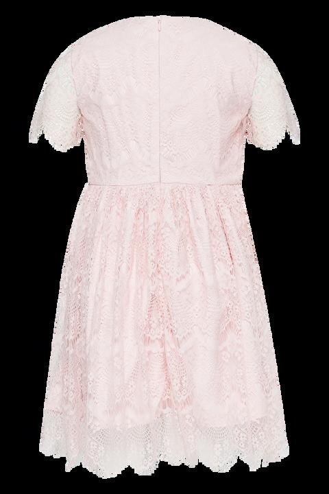 GIRLS MARGOT LACE DRESS in colour POTPOURRI